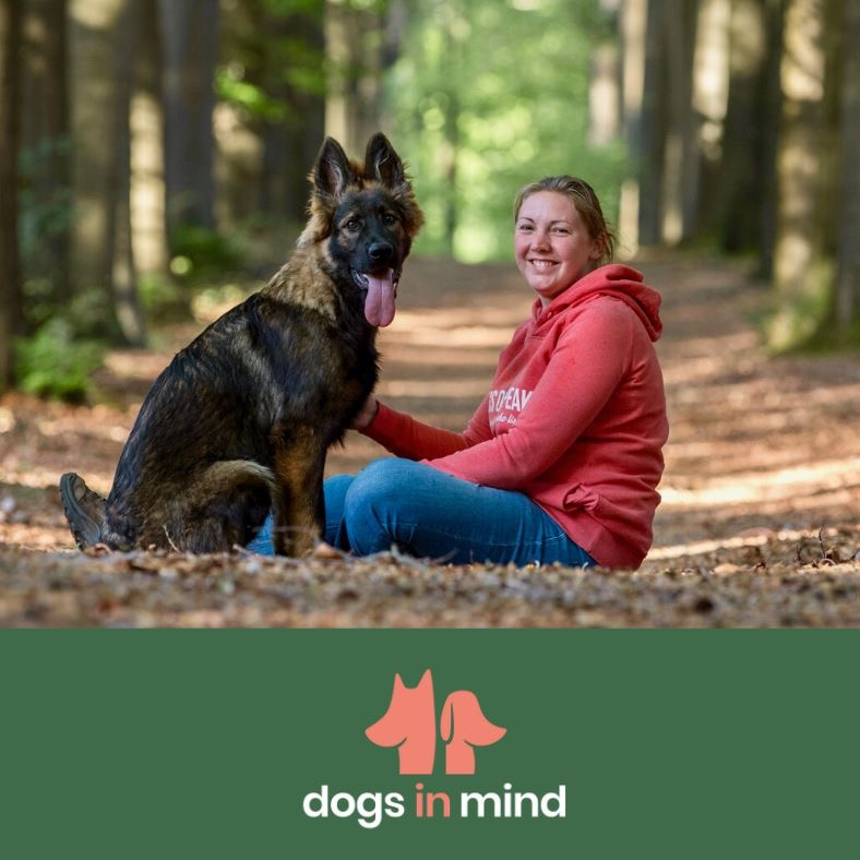hondentrainers Wingene | Dogs in Mind